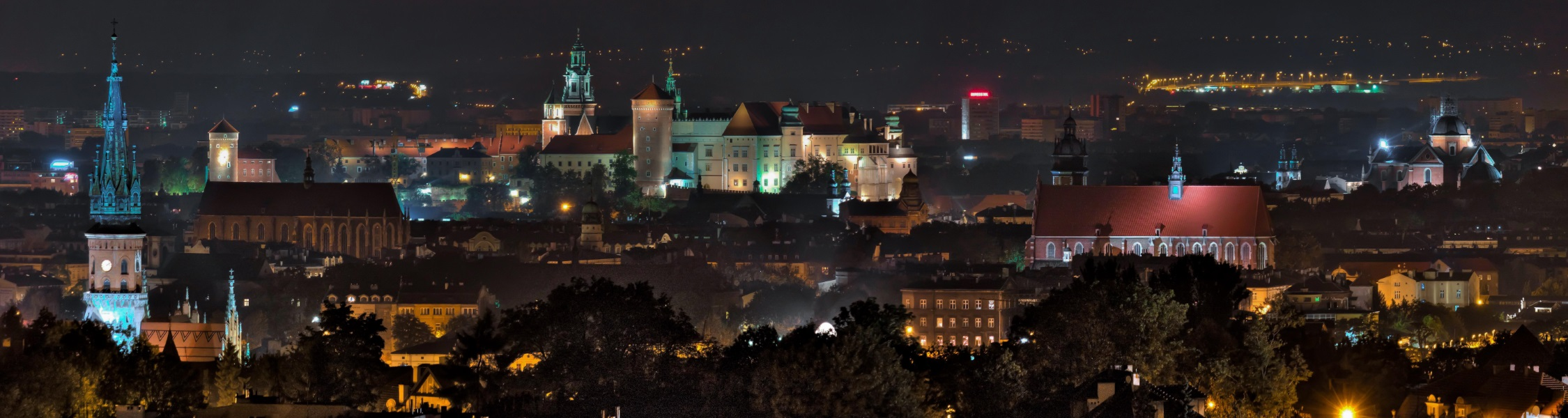 13 largest software companies in Krakow